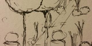 Haveskitse (1)