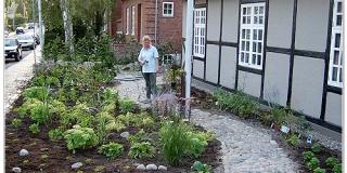 Gartnerens-forhave-2