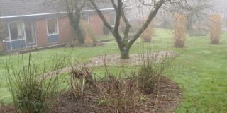 Haveprojekt-Kværndrup-vinterdag